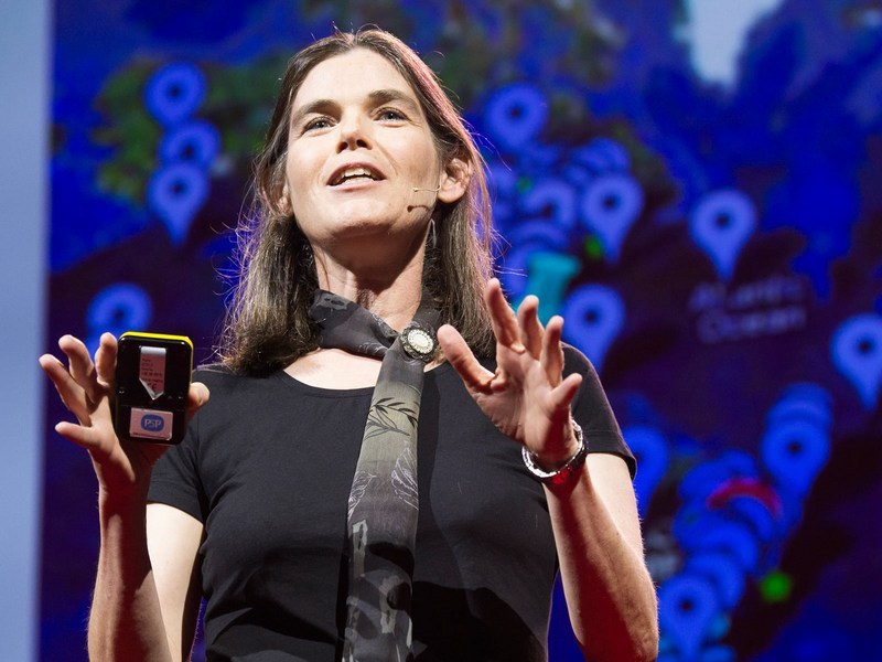 googles billion dollar longevity venture calico appointed machine learning expert daphne koller to employ ai to the science of aging